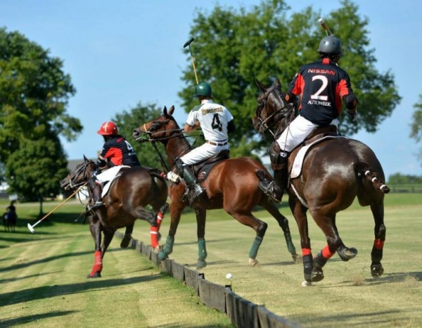 Chukkers for Charity to feature top polo player