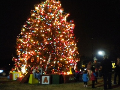 Annual tree lighting kicks off holidays