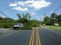 TRAFFIC ALERT: Stretch of Franklin Road closed due to downed tree