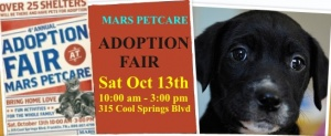 Adoption Fair highlights constant need for pet adoptions