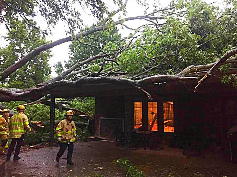 Brentwood Fire & Rescue responds to storm damage, car crash in latest report