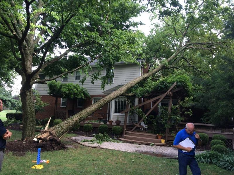 Brentwood Fire & Rescue responds to storm damage in latest report