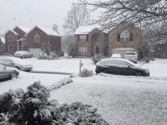 Middle Tennessee's biggest snowfall in 13 years left lawn damage