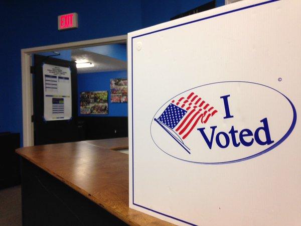 Bransford, Petersen lead alderman election in early voting