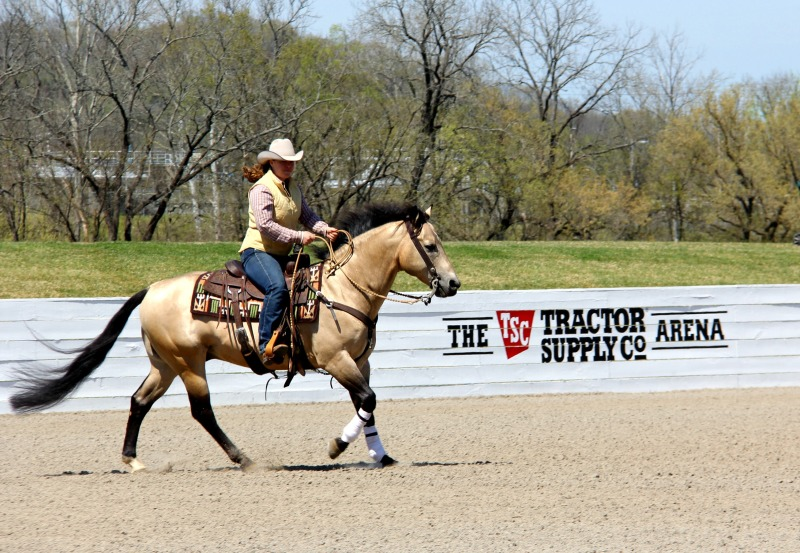 All-day horse show, special program opens up Tractor Supply Arena at Harlinsdale