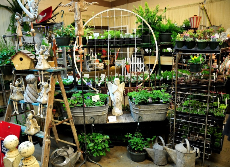 Lawn & Garden Show accepting vendor applications now